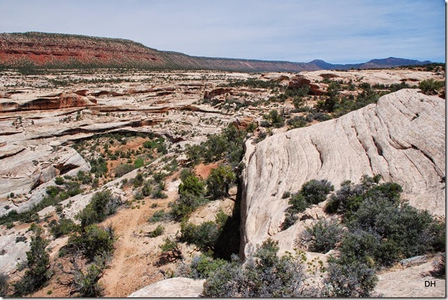 05-17-14 B Natural Bridges NM (74)