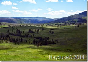 Yellowstone NP and Teton NP 053