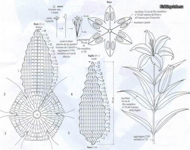 Лилии схемы с