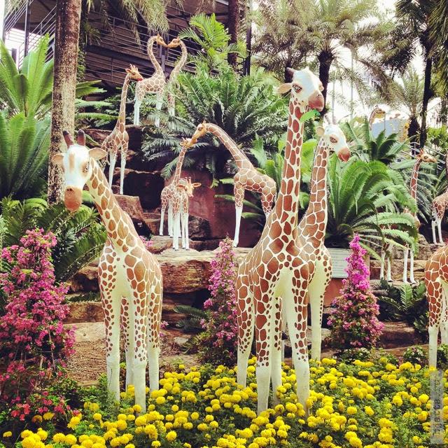 2012. Nong Nooch. Thailand. Pattaya. Просто сложно удержаться и не фотографировать их.