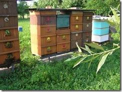 Včelí matky a ulice 044