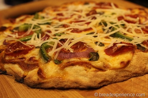 no-knead-pizza-dough034
