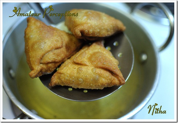 Chicken Samosa 11