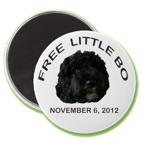 free little bo magnet-transparent
