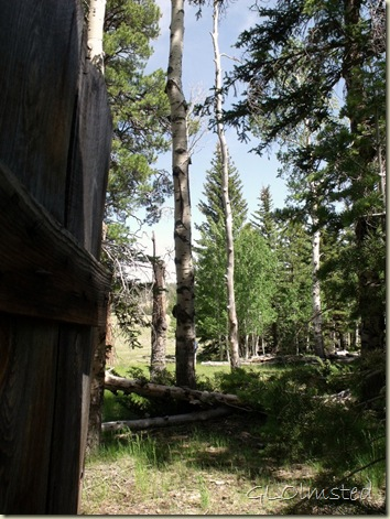 06 View from outhouse by cabin off SR67 Kaibab NF AZ (768x1024)