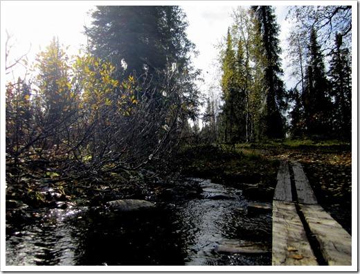 Ganska mycket vatten att passera över och eftersom det hade regnat i 6 veckor i sträck fanns det massor med vatten överallt.
