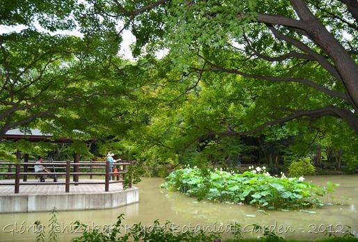 Glória Ishizaka -   Kyoto Botanical Garden 2012 - 32