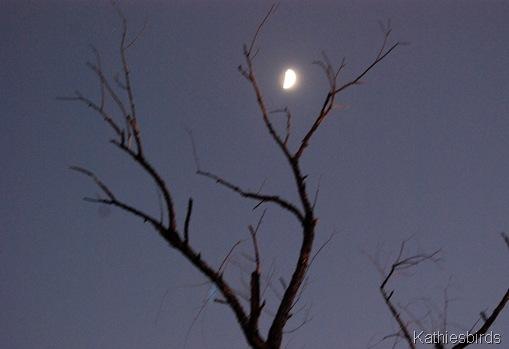 18. moon-kab