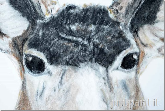 Deerhead-Sketch-E