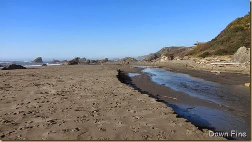 Harris Beach_058
