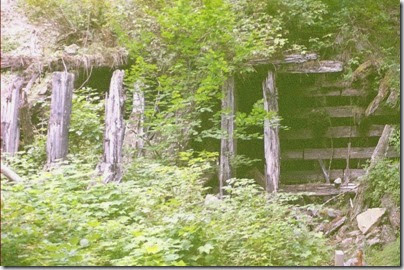 463161758 Snowshed Remains between the Twin Tunnels on the Iron Goat Trail in 2007