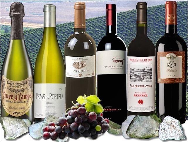 vinhos-tops-peninsula-baco2