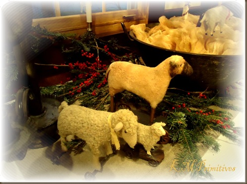 Sheep by kitchen tree