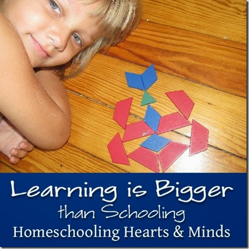 learning is bigger than schooling