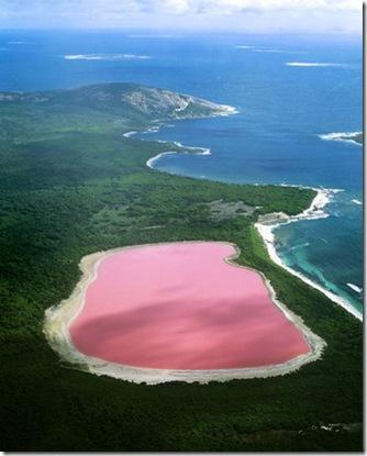 lacul roz-australia