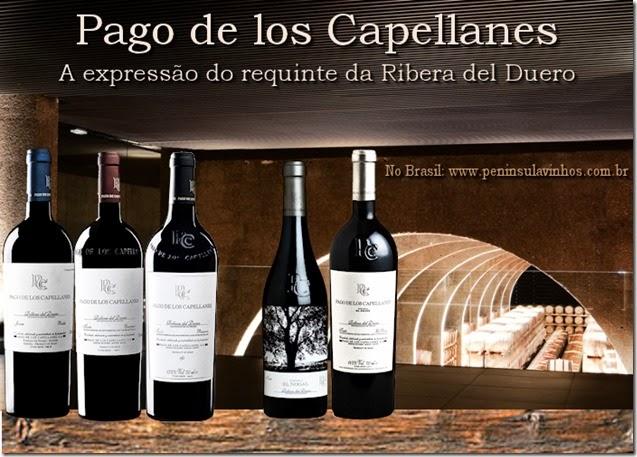 pago-de-los-capellanes-vinho-e-delicias