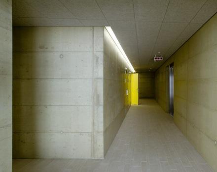 construccion-piscina-meier-associes-architectes