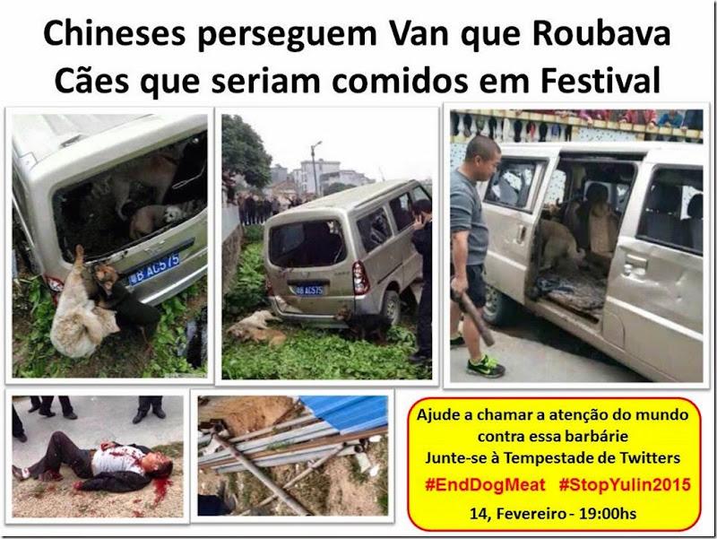 Chineses perseguem Van que Roubava