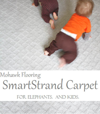 Mohawk Flooring SmartStrand carpet giveaway:  http://mohawk-flooring.linqiad.com/click/YDFQaGVidHJk