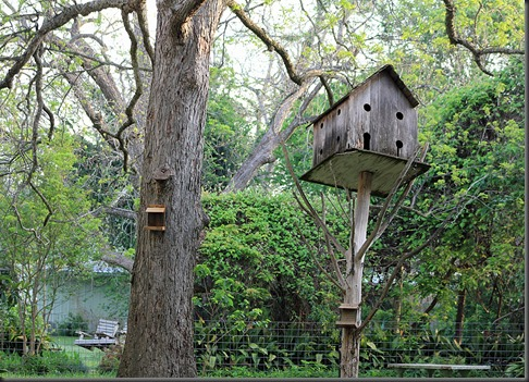 Columbus Texas Birdhouse
