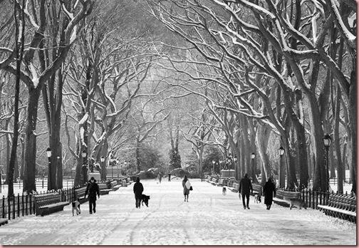 poets_walk_winter-fm1