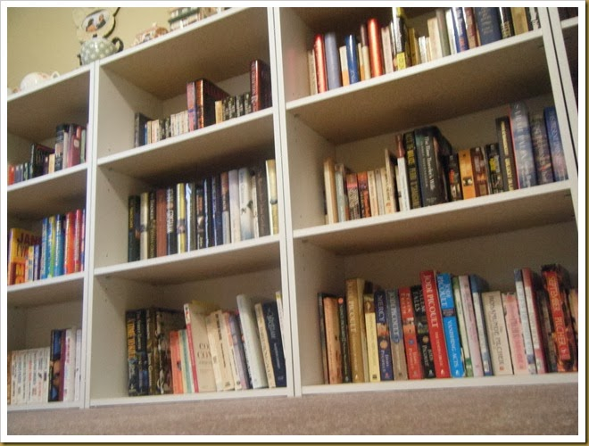 upstairs book shelves (4)
