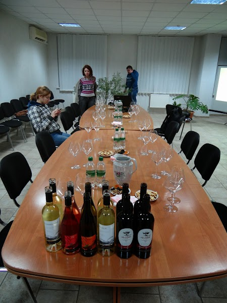 Basarabia - Drumul Vinului: Sala degustare Bostavan