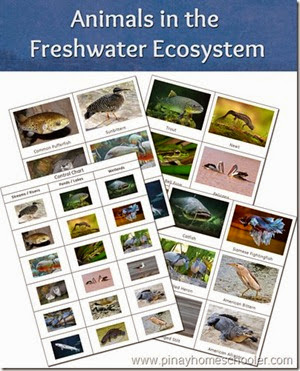 freshwater[14]
