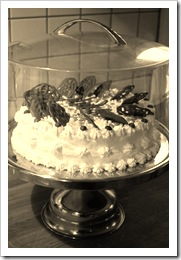 niikes tårta 2011 019