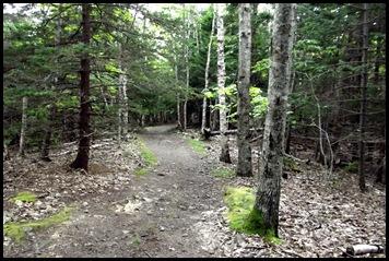 Plan C-Town walk 169