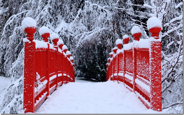 Winter-Season-Snow-Trees-Red-Bridges
