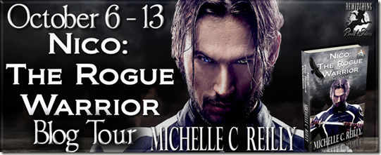 Nico The Rogue Warrior Banner 851 x 315