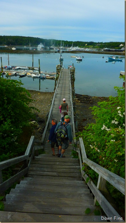 Acadia National Park_093