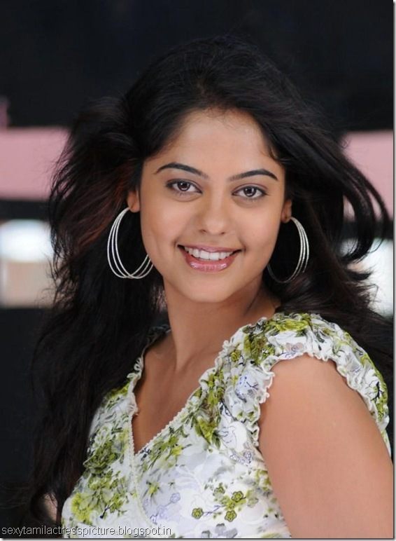 telugu-actress-bindu-hot-stills