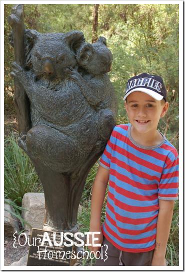 Skeeterbug | Our Aussie Homeschool