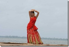 bhavana in _halfsaree1