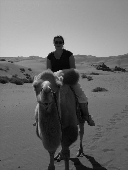Dunes - Montée à dos de chameau