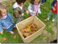 φθινοπωρινά φύλλα (2)