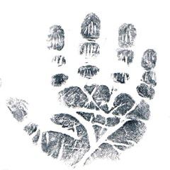 Griffin's handprint