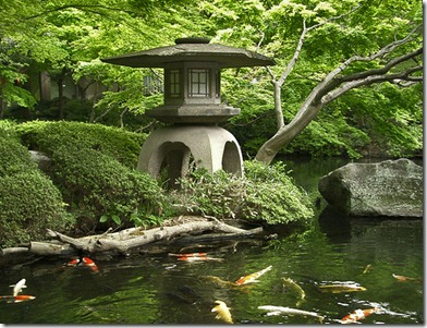 japanese water garden design