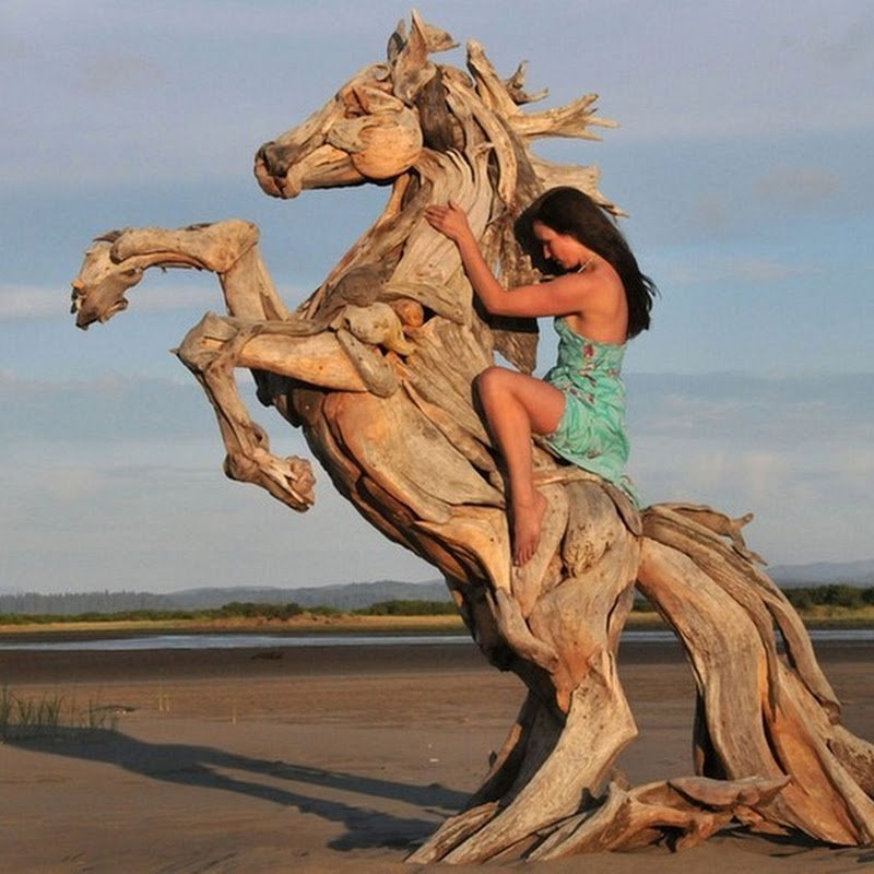 Amazing Driftwood Sculptures by Jeffro Uitto