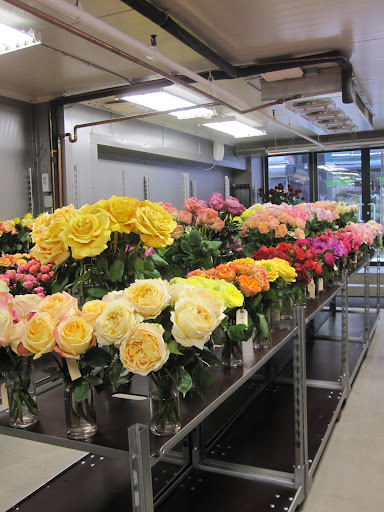 A variety of flowers that you can purchase at the shop.