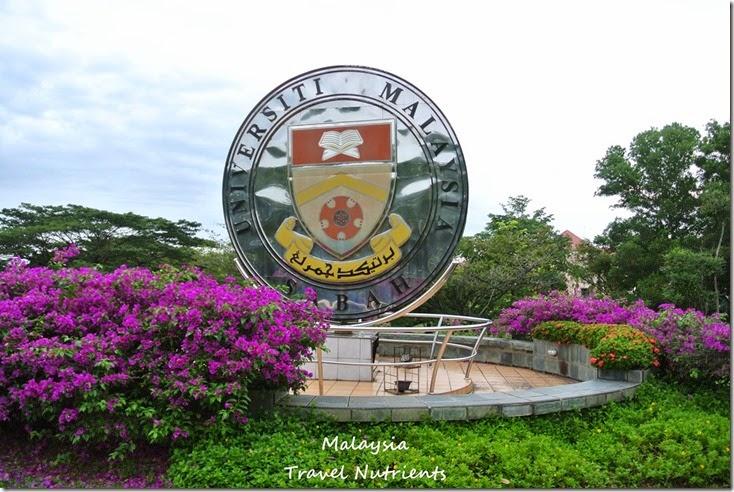 馬來西亞沙巴大學 粉紅清真寺 (31)