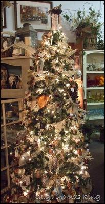 christmas 2012 051