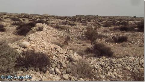La Moleta - Poblado Edad del Bronce - Derrumbes de muros