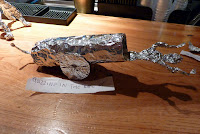 Todd's tin-foil cannon