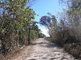 The track to Fatu Timau (Daniel Quinn, August 2011)