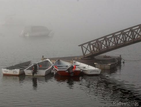 6. boats-kab