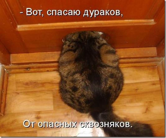 kotomatrix_085