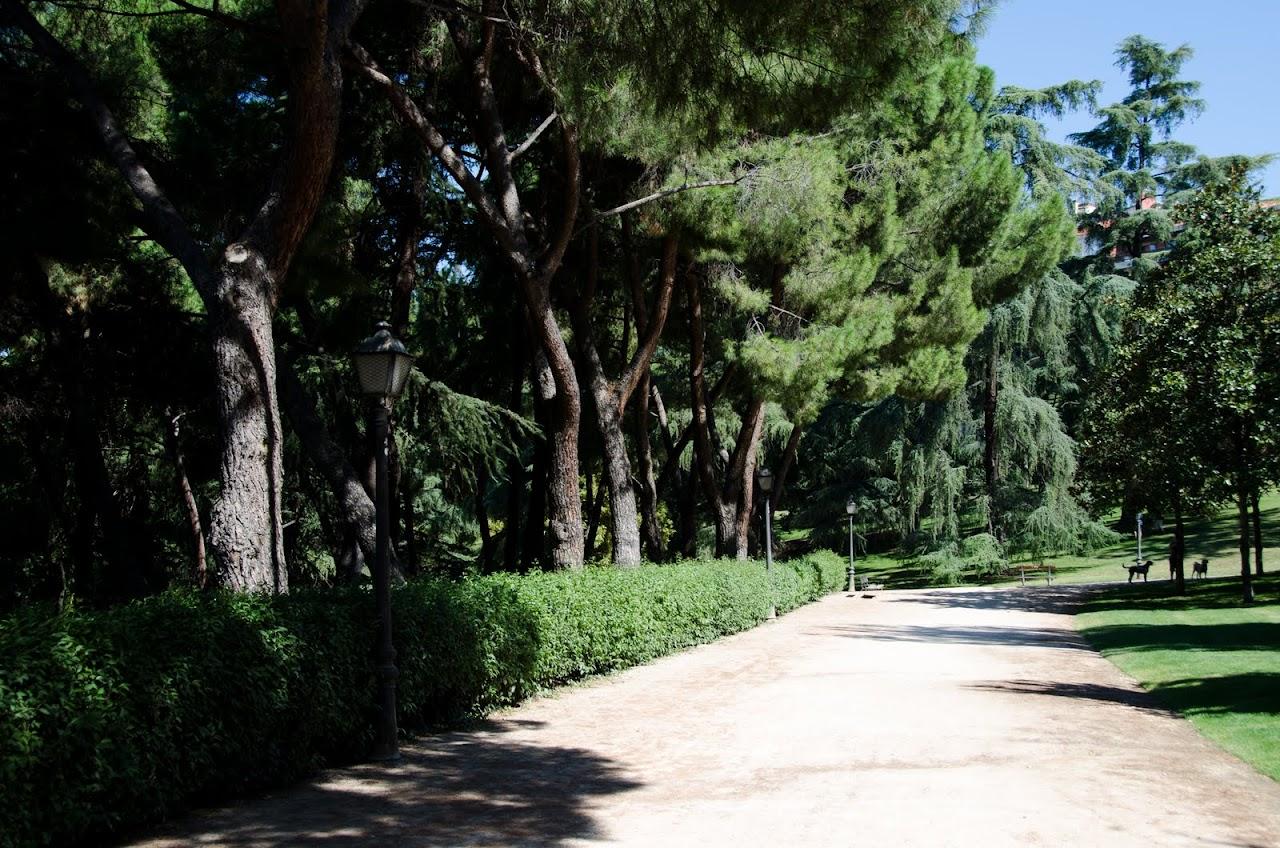 Campo del Moro